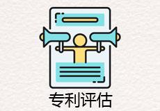 国际专利评估